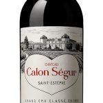 Saint Estephe, Château Calon Segur 2018 3. Cru